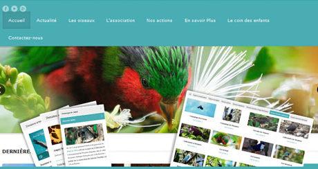 Site Web Manu